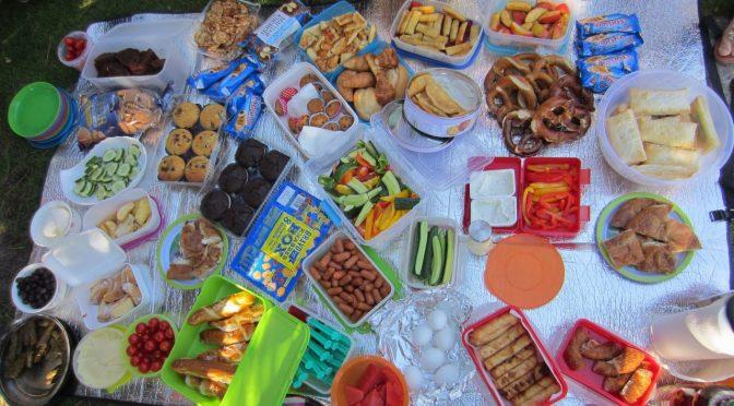Projekt FLY mit Picknick bei Planten un Blomen