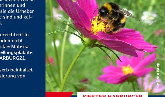 7. Harburger Nachhaltigkeitspreis –  wir waren dabei!
